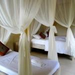 Taman Indrakila Resort 31 Bungalows