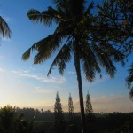 Taman Indrakila Resort 49