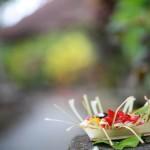Taman Indrakila Ubud Bali 22